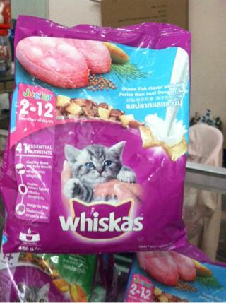 harga Catfood whiskas junior cat food makanan kucing Tokopedia.com