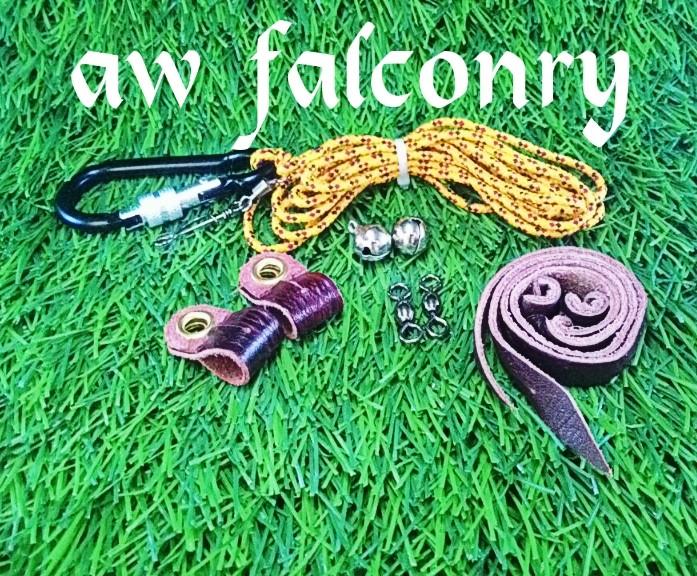 harga Set burung hantu buffy fish owl ekonomis Tokopedia.com