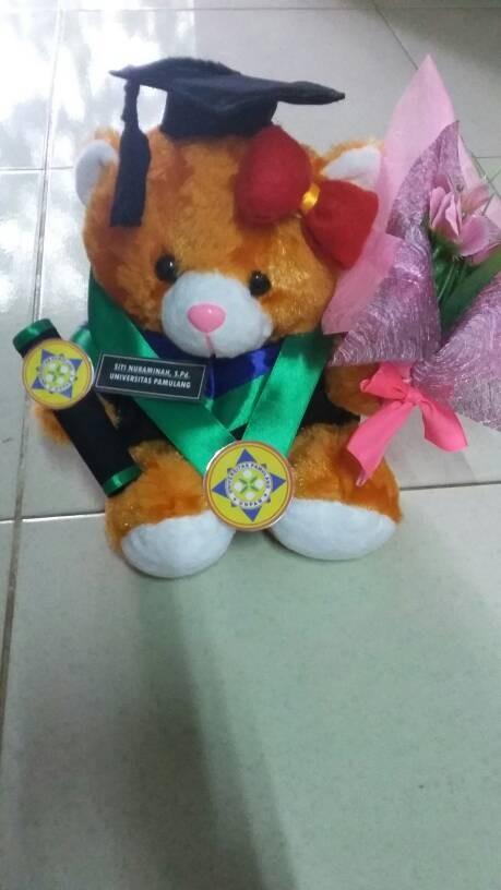 harga Boneka wisuda bear coklat 27cm dengan buket bunga Tokopedia.com