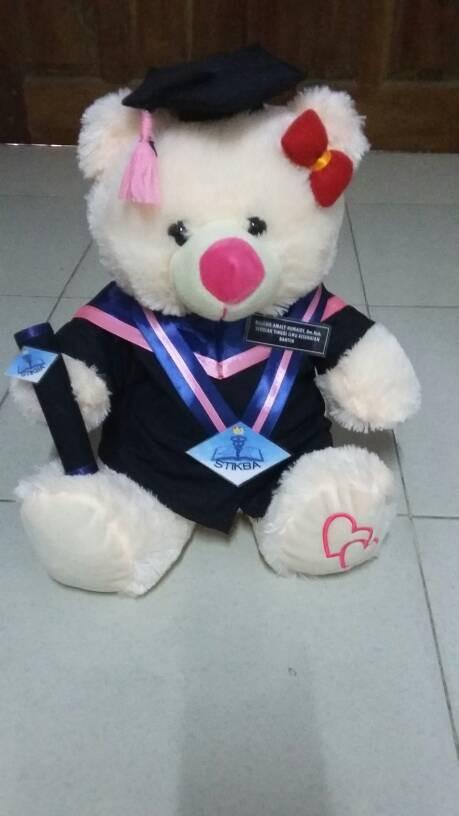 harga Aneka bear cream 40cm Tokopedia.com