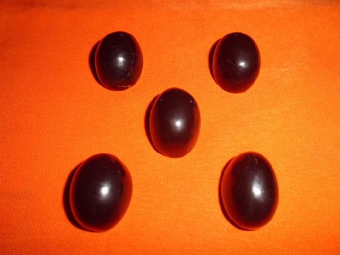 harga Mata cincin batu fosil galih kelor jumbo 2 cm Tokopedia.com