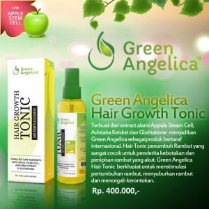 harga Green angelica green angelica Tokopedia.com