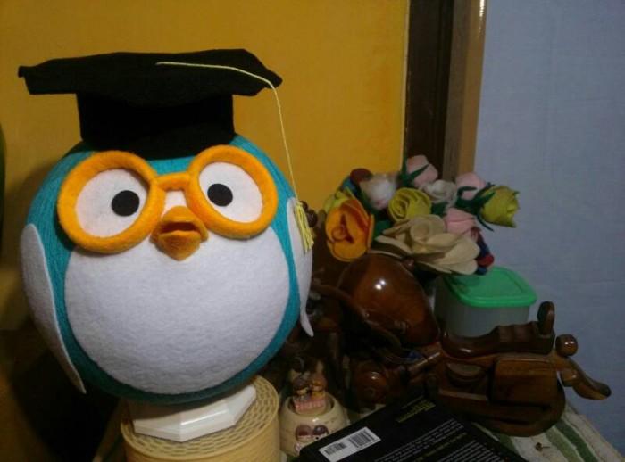 harga Lampion Benang   Lampu Tidur Karakter Penguin Wisuda Toga Tokopedia.com