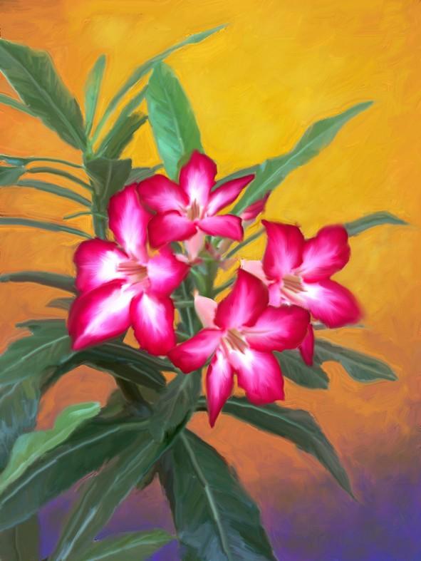 Sketsa Bunga Gambar Bunga Lukisan Cat Air