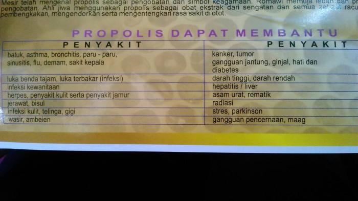 Jual Propolis Asli Ptmss Kota Bandung Futulepi Tokopedia