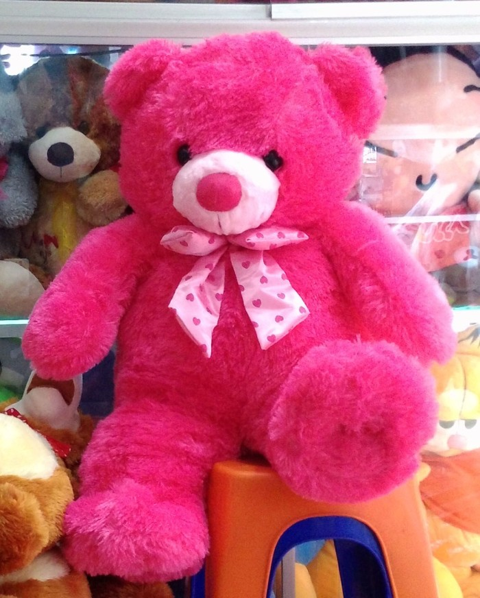 Hasil gambar untuk Boneka Beruang Jumbo