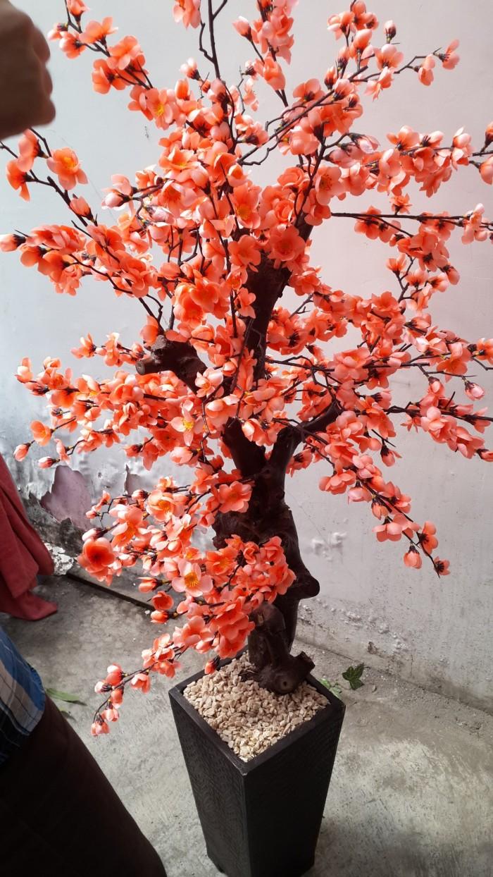 Wallpaper Bunga Sakura Warna Ungu