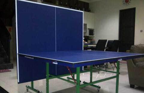 harga Meja pingpong tenis meja merk powerspin 201 original import dari china Tokopedia.com
