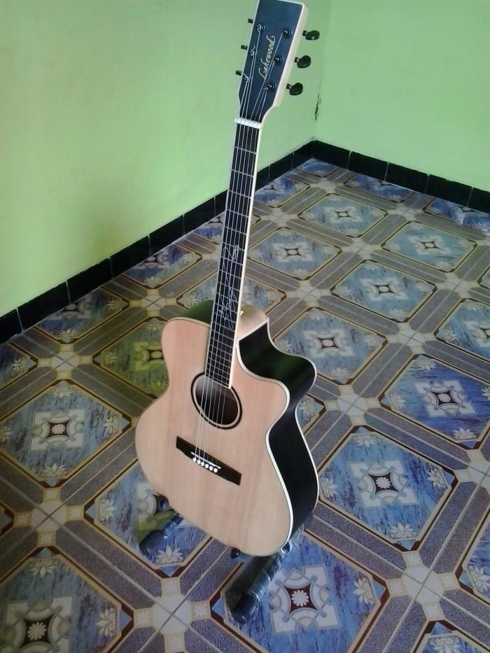 harga Gitar akustik lakewood neck mapel preamp fishman Tokopedia.com