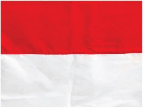62 Gambar Bendera Merah Putih 3d Terlihat Keren