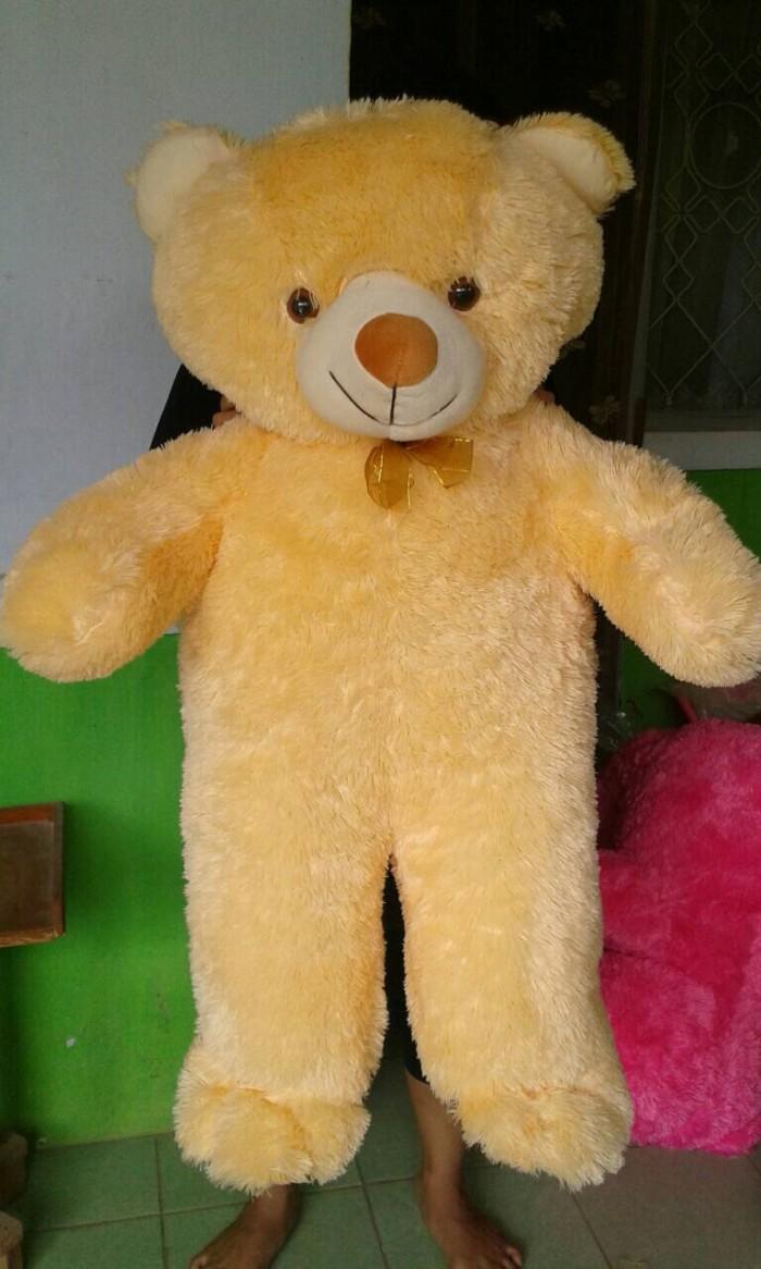 harga Teddy bear jumbo Tokopedia.com