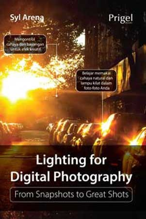 harga Book detail lighting for digital photography from snapshots to great s Tokopedia.com