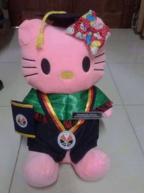 harga Boneka wisuda hello kitty pink 50cm Tokopedia.com