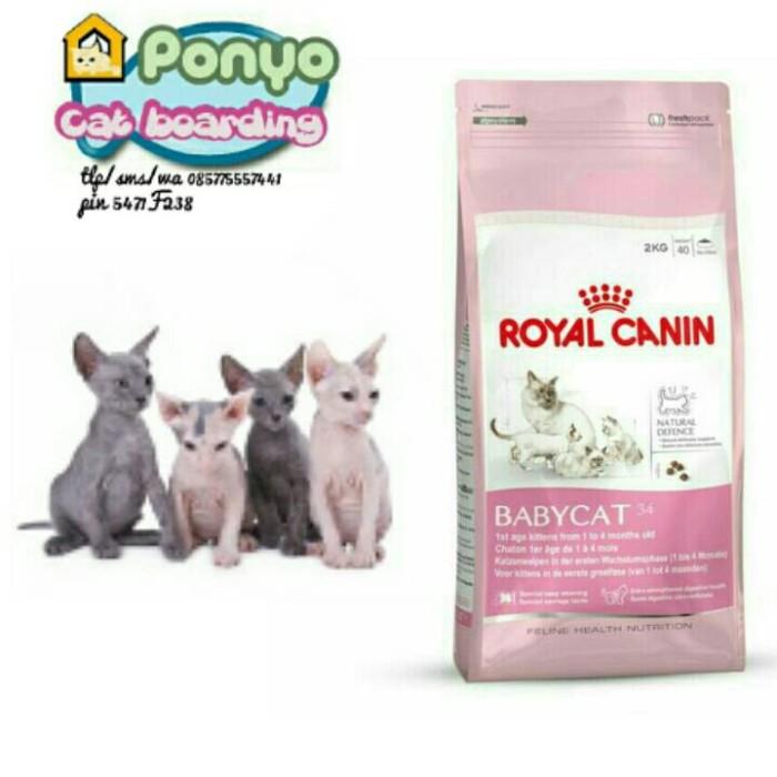 Makanan Kucing Royal Canin Mother & Babycat 2 Kg - Daftar Update Harga Terbaru Indonesia