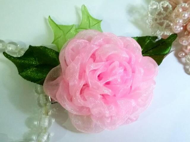 86+ Gambar Bunga Mawar Merah Jambu Paling Baru