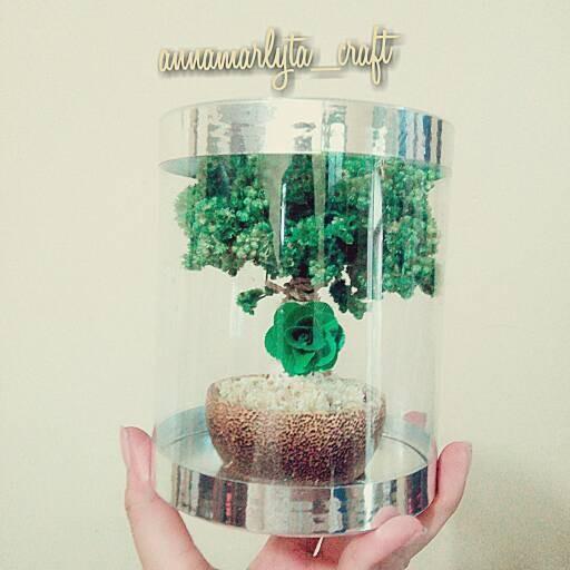 harga Edelweis batok hijau (bunga tengah) Tokopedia.com