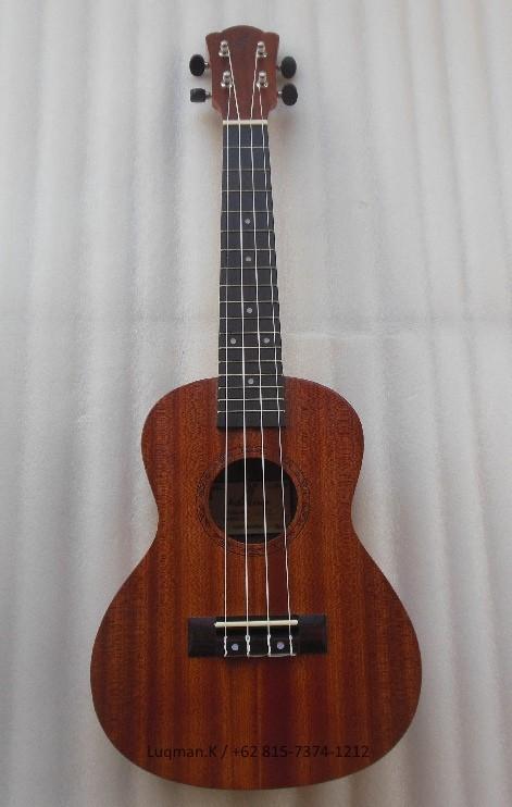 harga Ukulele adeline uk-23 concert solid wood natural Tokopedia.com