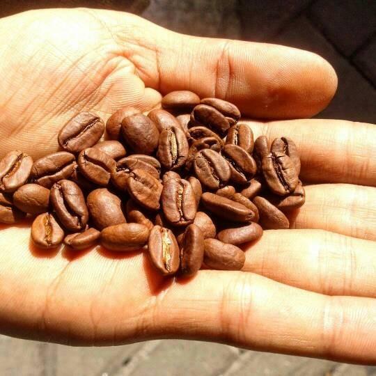(100gr) kopi robusta aceh gayo