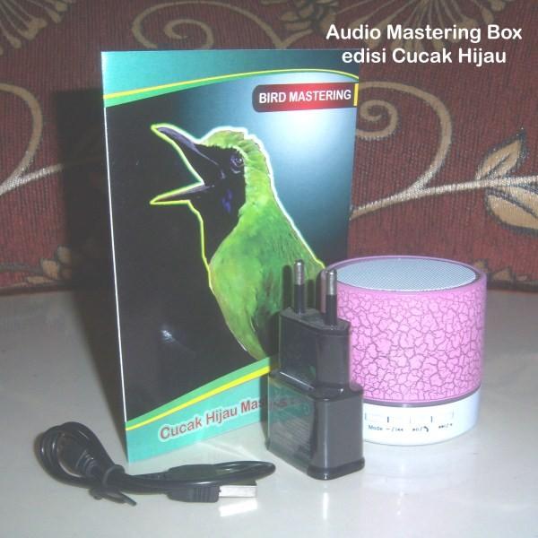 harga [hot] Audio Box Mastering Burung Cucak Hijau Tokopedia.com