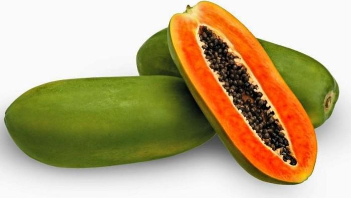ผลการค้นหารูปภาพสำหรับ buah pepaya