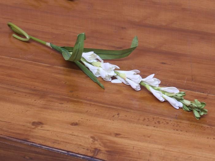 Jual Bunga Hias Bunga Sedap Malam Batik Nitnot Tokopedia