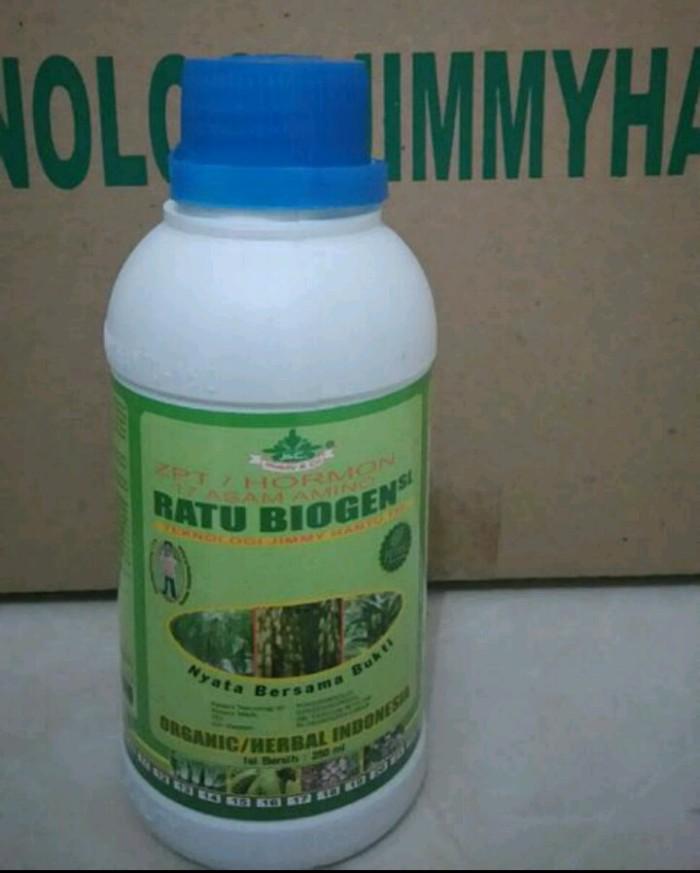 ZPT / Hormon RATU BIOGEN SL 250 ML - Produk Asli Pupuk Jimmy Hantu