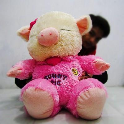 harga Boneka babi sunny pig jumbo baju pink Tokopedia.com