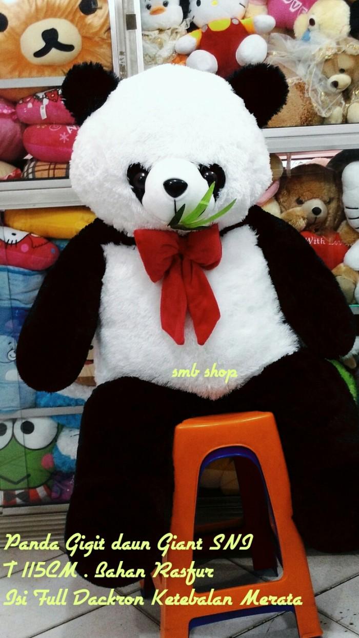 Gambar Lucu Boneka Panda Gambar Ngakak