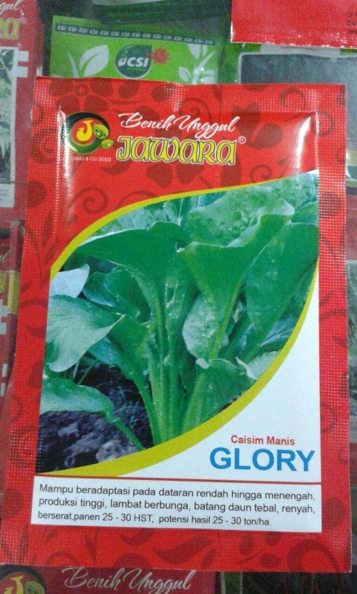 1000 Benih Sayur Caisim (Sawi Hijau) Manis Glory