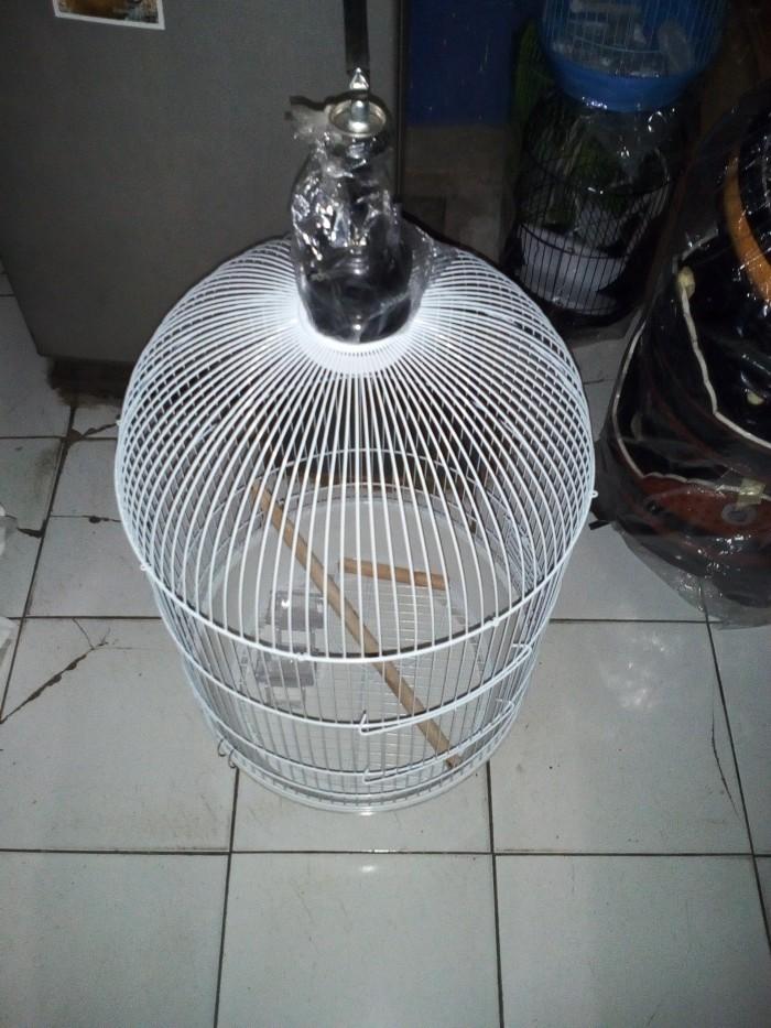 harga Kandang love bird jumbo Tokopedia.com