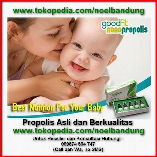 harga Propolis brazilian nano goodfit asli untuk anak bayi anda Tokopedia.com