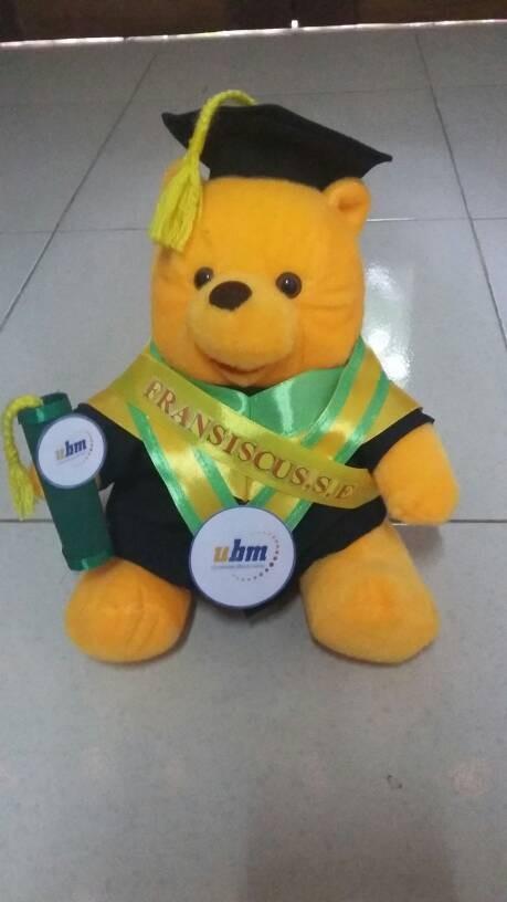 harga Boneka wisuda winnie the pooh 25cm+selempang Tokopedia.com