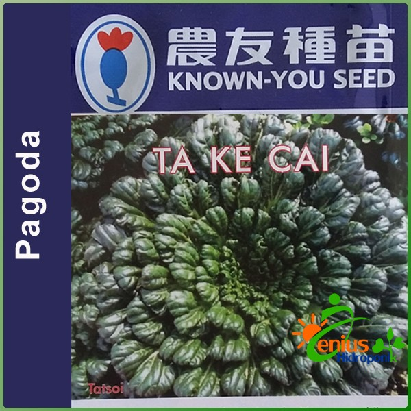 Biji Bibit Benih Pagoda TA KE CAI Known You Seed .