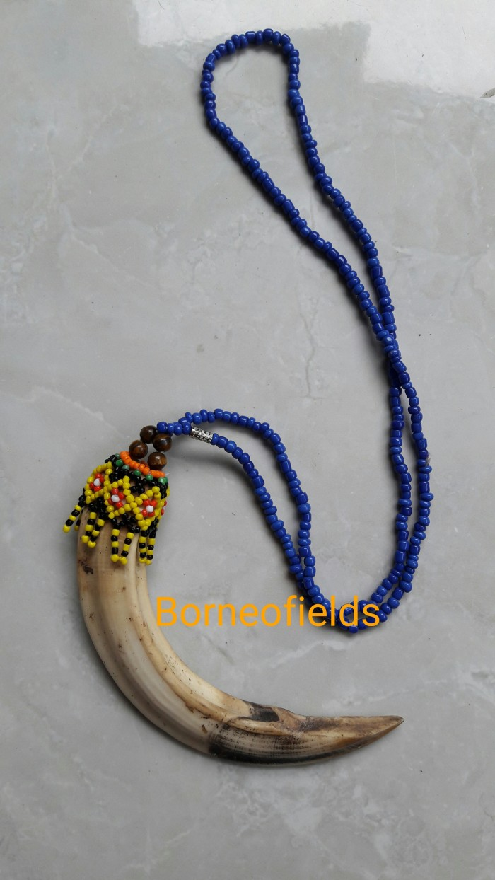 harga Kalung taring babi hutan Tokopedia.com