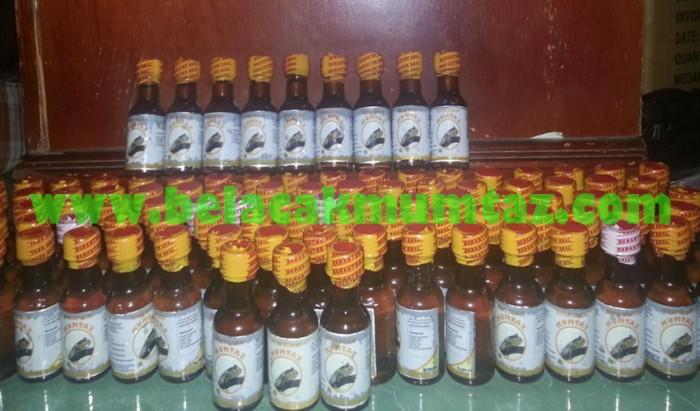 jual obat kuat herbal pria perkasa minyak belacak mumtaz 100 alami