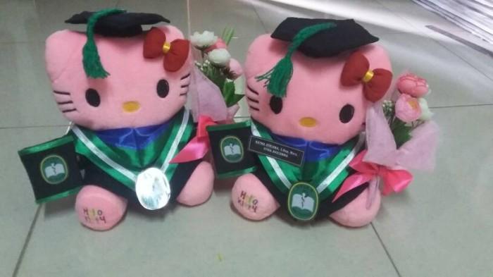 harga Boneka wisuda hello kitty pink 25cm dengan buket bunga Tokopedia.com