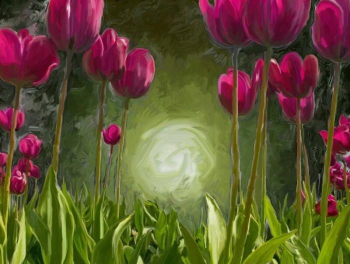 Unduh 5000 Wallpaper Bunga Tulip Bergerak  Terbaik
