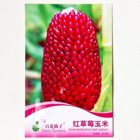 Foto Produk Benih Biji Bibit Jagung Popcorn pop corn Merah Retail Pack dari Biji Benih