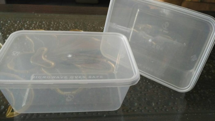 Jual tempat makan plastik (kotak bento) transparan/ bening