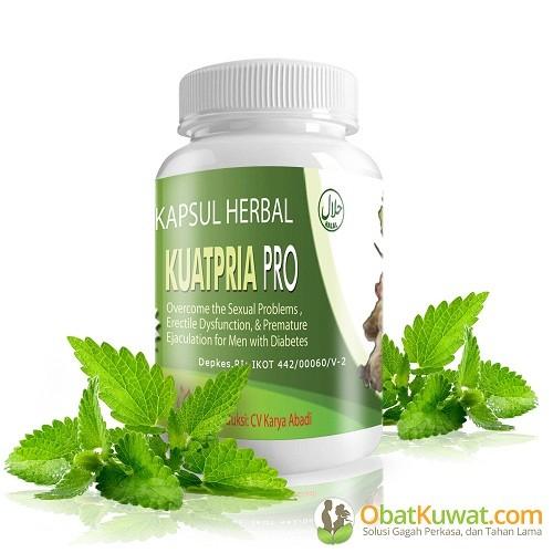 jual kuatpria pro obat kuat herbal khusus pria diabetes agent