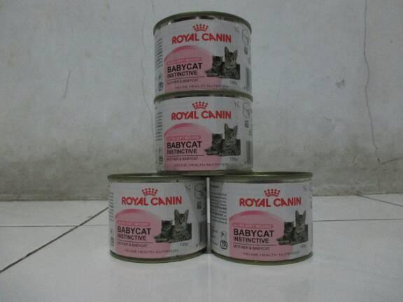 harga Royal canin babycat Tokopedia.com