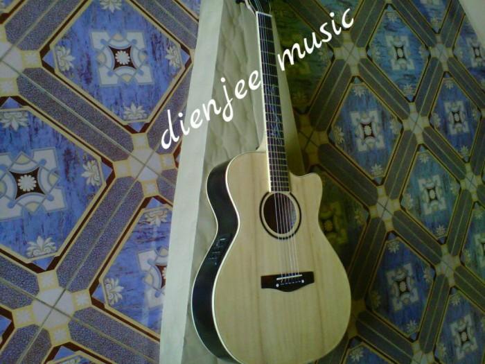 harga Gitar lakewood preamp fishman presys + Tokopedia.com