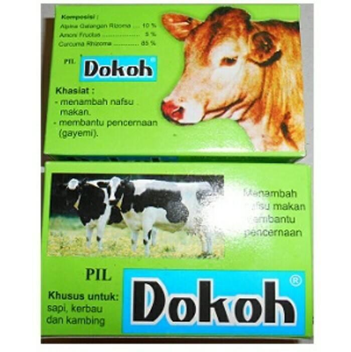 Jual Pil Nafsu Makan Dan Pencernaan Sapi Kambing Domba Dokoh