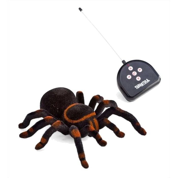 harga Csl spider tarantula rc radio remote control 4ch Tokopedia.com