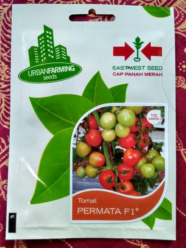 ... 100 seeds Benih Tomat Permata F1 Cap Panah Merah