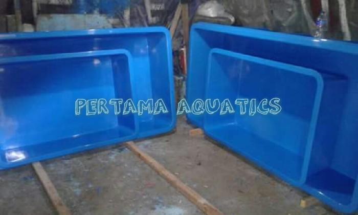 Info Bak Fiber Ikan Second Katalog.or.id
