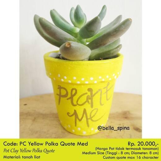 jual pot tanaman kaktus amp sukulen yellow quotes clay handmade