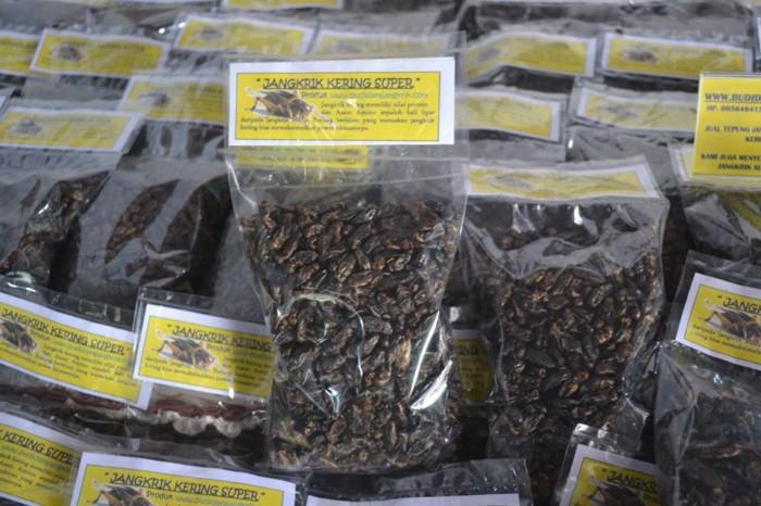 Jual Jangkrik Kering 100 Murni Cocok Untuk Pakan Burung Gelatik Wingko Kab Tulungagung Ternakjangkrik Tokopedia