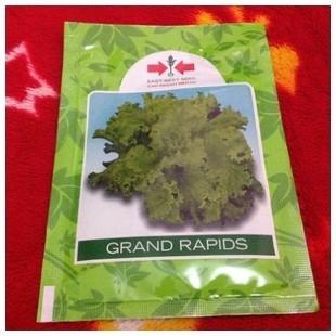 Benih Selada Grand Rapid Panah Merah 15 gram original packing