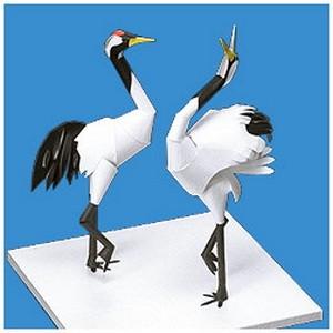 48+ Sketsa gambar hewan burung berwarna terupdate